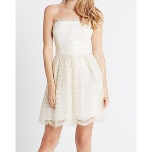 NWT BCBGeneration Gold Scalloped Lace Sheath Dress